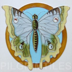 Arts and Crafts Butterfly 3