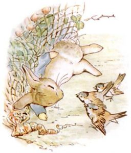 Peter Rabbit Tile 17