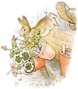 Peter Rabbit Tile 21