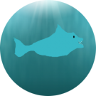 Dolphinator 1897 Avatar